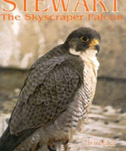Stewart The Skyscraper Falcon