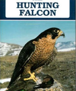 The Hunting Falcon
