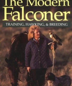 The Modern Falconer