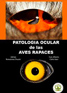 patologia-ocular-aves-rapaces